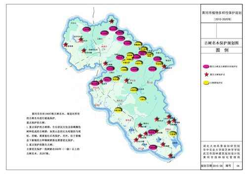 古树名木保护规划图
